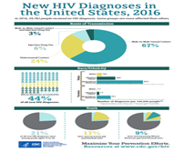 New HIV Diagnosis in the United States, 2016. Go to fact sheet.