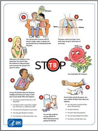 Stop TB   National Prevention Information Network